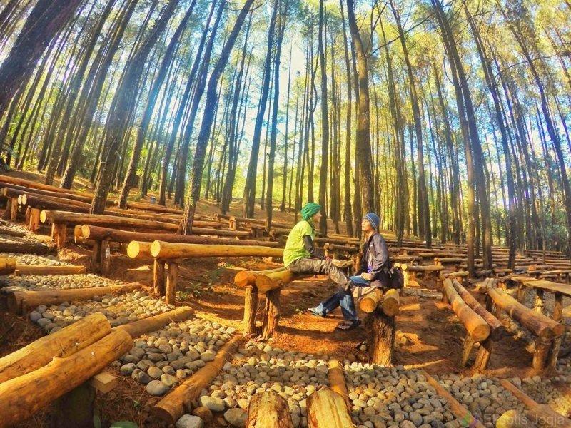 10 spot foto keren di hutan pinus mangunan jogja yang lagi hits